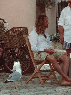 seagull jesusguy summer sttropez photography
