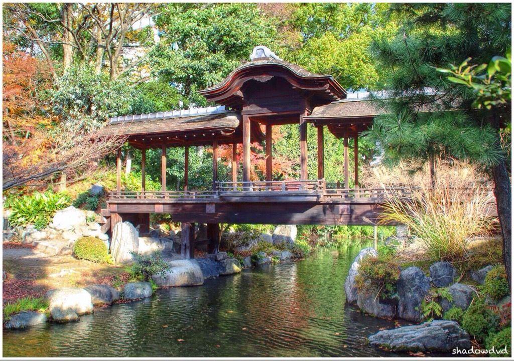 Giardino Zen Kyoto Giappone Image By David