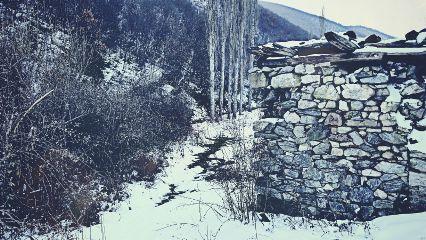 winter snow nature photography landscape