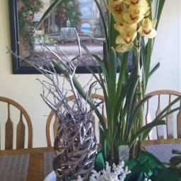 orchid flowers decor indoorgarden garden