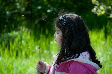 girl photography dandelion green
